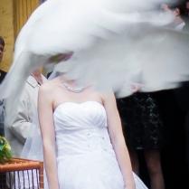 Hochzeitsrecherche 11